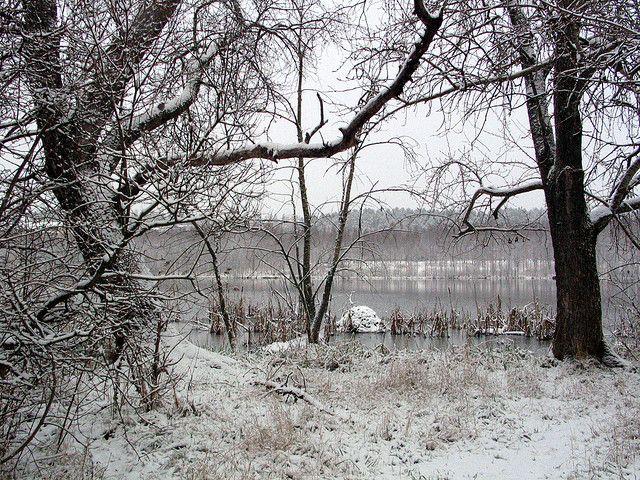 Talviranta / Winter beach / (c) Minna Autio