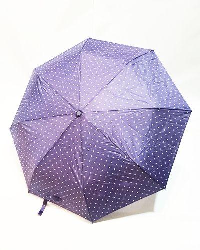ZSA ZSA ZSÚ: Noviembre lluvioso, año copioso