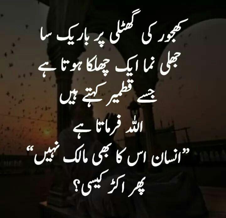 Pin By Soomal Zulfiqar On Urdu