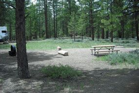 Campsite in Sunset Campground, with trees, grass, picnic table and fire grate.