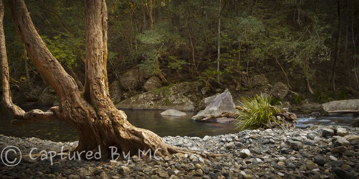 New Landscape Prints and Canvas available through the website today. This one is of a wonderful Never Never Creek.