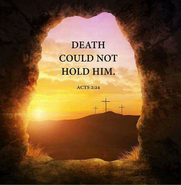 The angel rolled the stone away!! He has risen--just as He said He would!!! Because He lives we can face tomorrow! He's alive and we are forgiven! Happy Resurrection Day!!