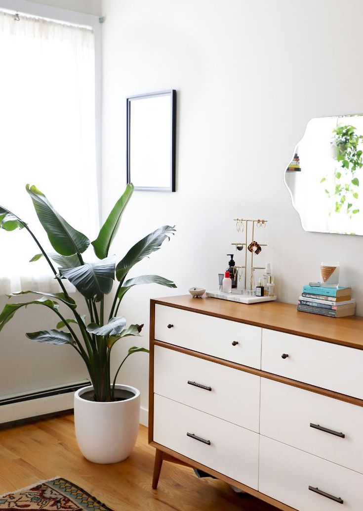 I\'m on a Strict Budget—Here\'s How I Decorated My Brooklyn Rental ...