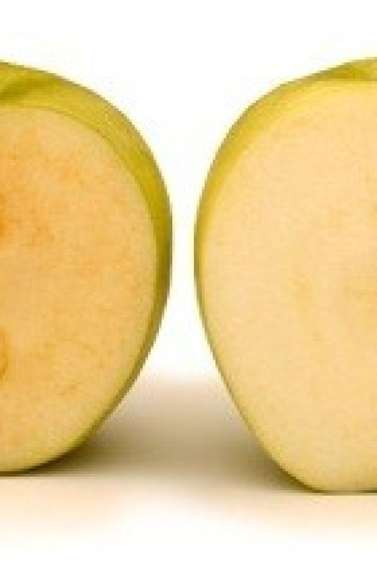 Non-Browning Apples GMO