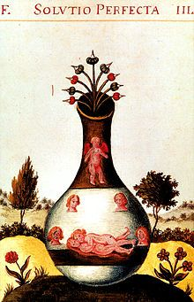 Homunculus - Wikipedia