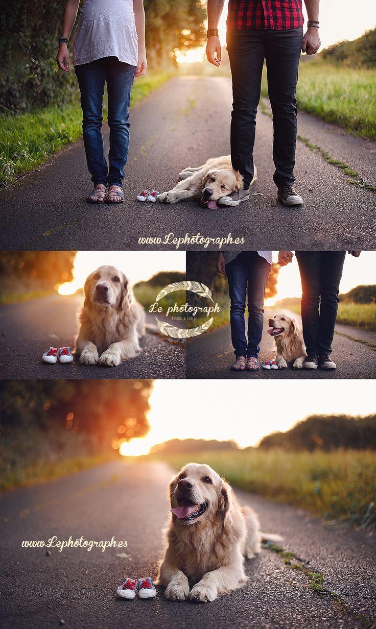 Fotografías de embarazo junto a tu mascota :) Maternidad + Perro Maternity photoshoot with dogs :)  www.lephotograph.es