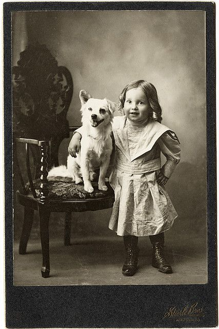 adorable vintage cabinet card photo by stierle bros., marshfield, wisconsin