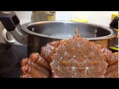 高橋シェフ 最高級毛ガニの蒸し焼き  北海道の毛蟹  Erimacrus isenbeckii  Steamed Horsehair crab - video.athenaeum.ru