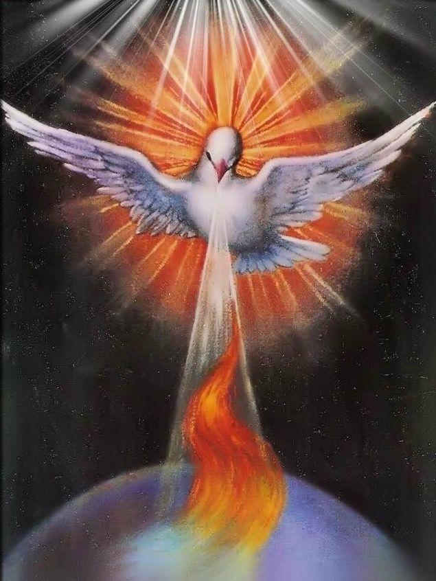 Todos, cómo Jesús, queremos que el mundo entero arda de amor generoso y desinteresado
