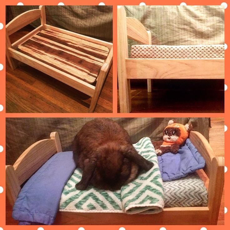 ✨SUPERIOR COMFORT IKEA DUKTIG BUNNY BED HACK: use a hard, wood cutting board (hard plastic will work fine too) for better support; the You & Me Supreme Slumbers Orthopedic & Memory Foam Mat from Petco in size small is the perfect mattress size for this bed; don't forget to add assorted tea towels, blankets, and pillows for additional comfort and fun! 😊💕🐇🐾