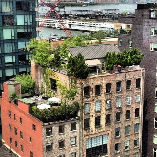 321 Best Images About Garden Rooftop Designs On Pinterest: 26 Best Truly Green Living Roofs Images On Pinterest
