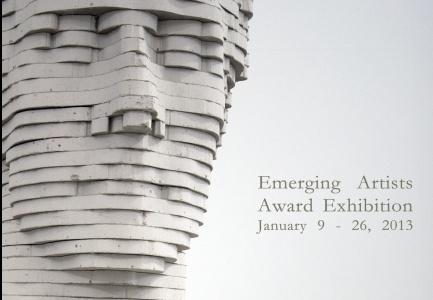 Emerging artists award exhibition