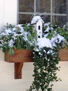birdhouse in window box - great for winter when no flowers