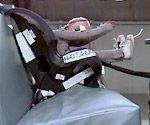 Evenflo #car seats,Evenflo seats, Evenflo baby seats,the best #car seats,#convertible #car seats,best car seats,baby car seats,toddler car seat,the best car,britax boulevard #convertible car seats,britax boulevard convertible,britax boulevard car seats http://www.topstrollers.info