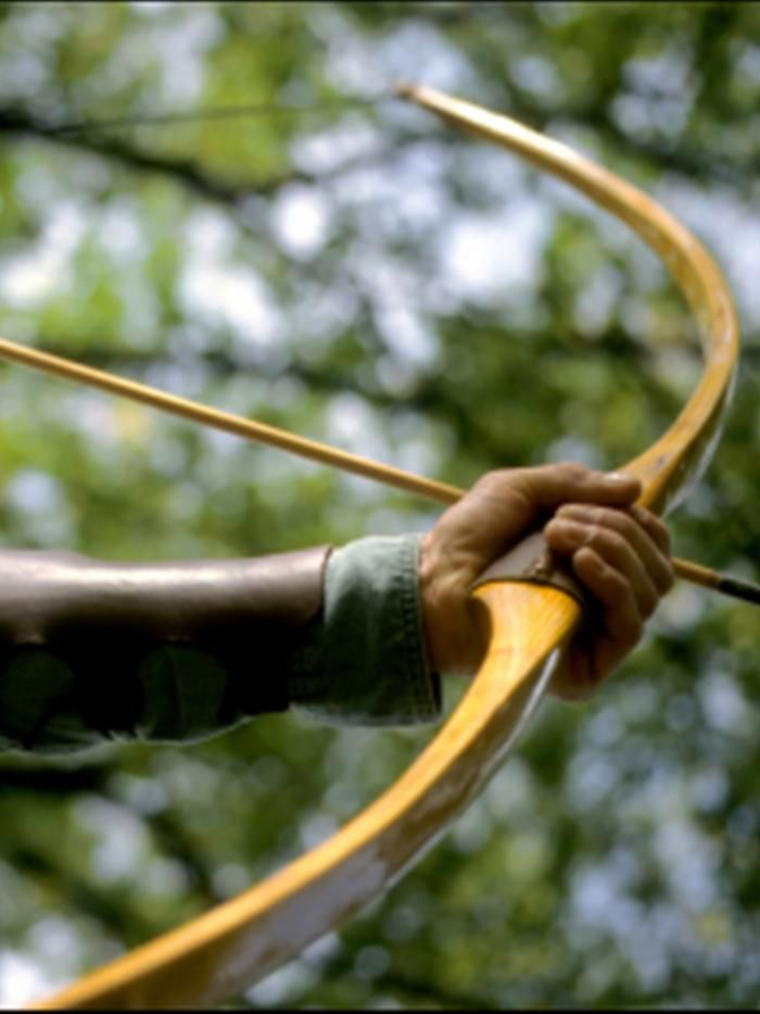 The Archers of Ravenwood - A Short History of the English Longbow | Development and use of the English Longbow from its 12th century Welsh beginnings to its eventual military demise in the 16th century. See link for historically accurate description of English Longbow archery gear: The length of the finished product was from 67 inches to 78 in. in length and up to 2 in. thick at the riser. This length was more or less fitted to the individual user. ...There was no arrow rest on the handle...