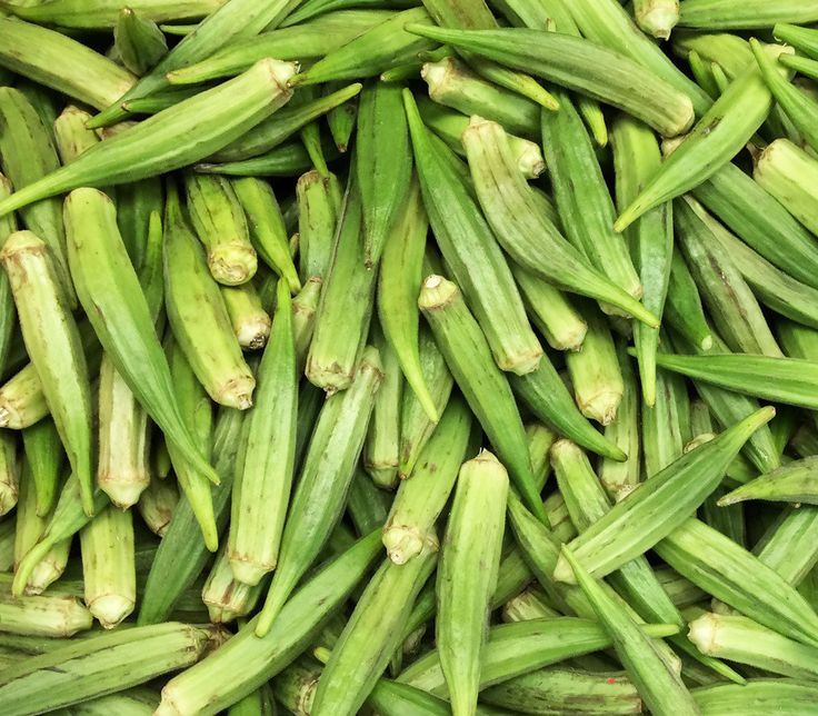 Jade Okra Seeds + FREE Bonus 6 Variety Seed Pack - a $30 Value!