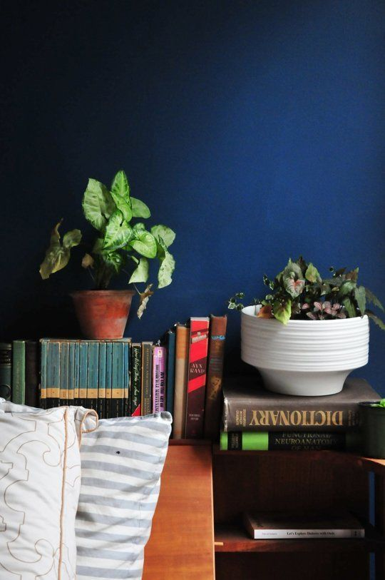 The Best Paint Colors 10 Valspar Bold Brights Navy Bedroom WallsBlue