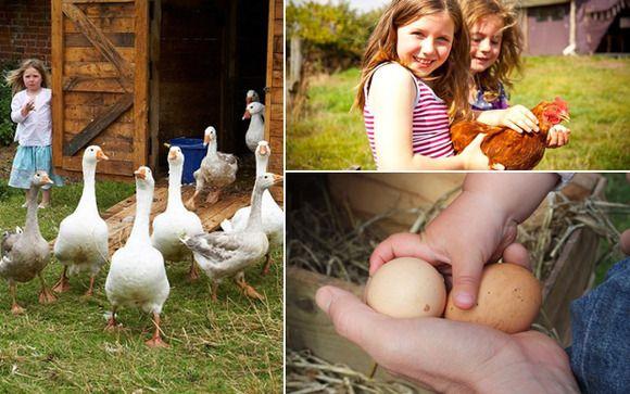 Pasa unos días en la campiña inglesa con los niños y ayuda en las labores de la granja #viajes #viajarconniños http://charhadas.com/ideas/33006-vacaciones-en-una-granja?category_id=69-viajes