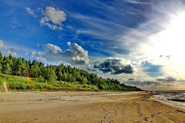 Plaża w Sztutowie
