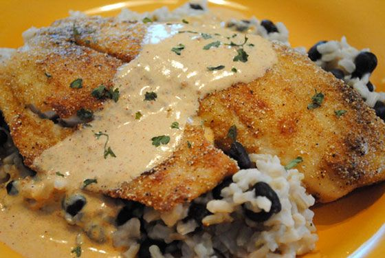 1000 images about recipes seafood dinner ideas on for Creamy sauce for fish