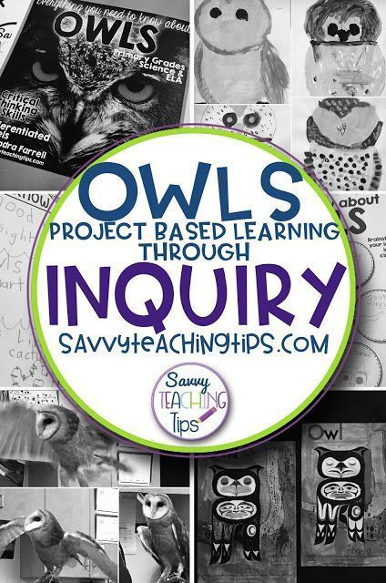 I thought that Project Based Learning in Primary classrooms would be difficult, but heres an easy approach to Inquiry which is easy to follow for teachers who are new to PBL.
