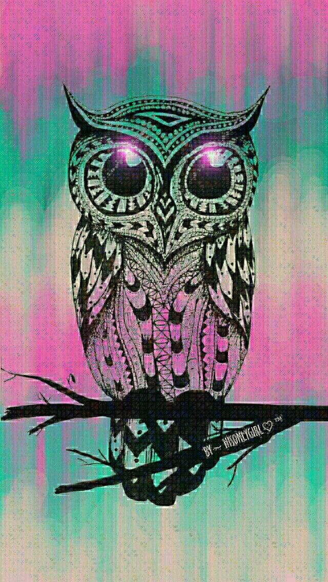 cute owl backgrounds tumblr - photo #34