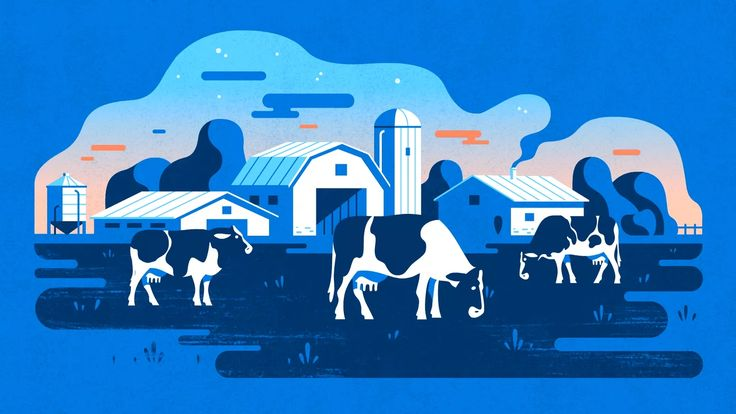 We're proud to share two deliciously milky spots for The Dairy Farmers of Canada. These charming spots  illustrate the positive effects of how the Canadian…
