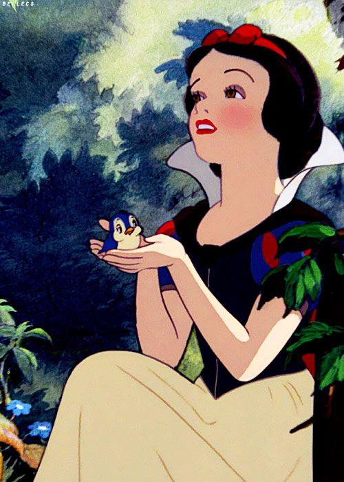 Snow White the Seven Dwarfs..