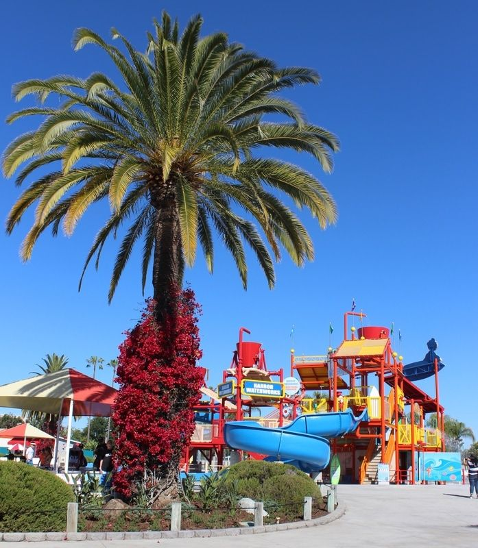 Tips to enjoy the recently renovated Soak City