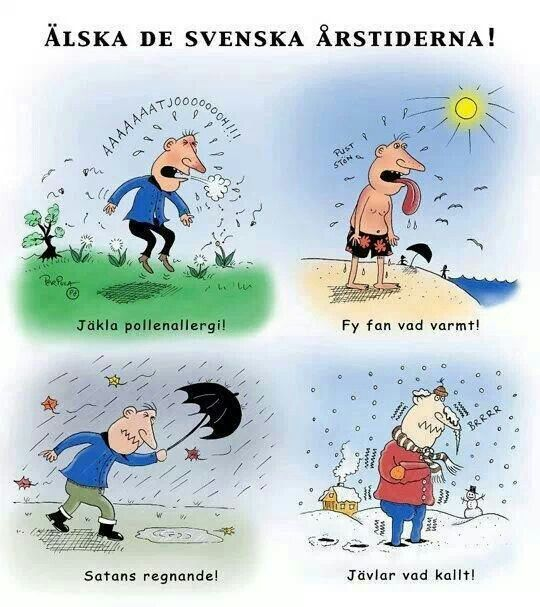 Love those different seasons in Sweden :) first: damn pollenallergy (spring), damn it's hot (summer), damn the rain (fall) and damn it's cold (winter).