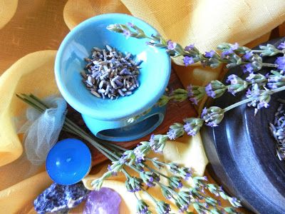 FREYA KOSMETIK: LAVANDA-la pianta della serenità