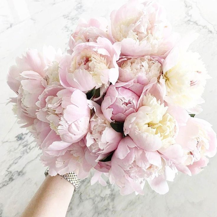 LOVE this picture! Nothing like a bunch of pretty blooms to brighten your day!