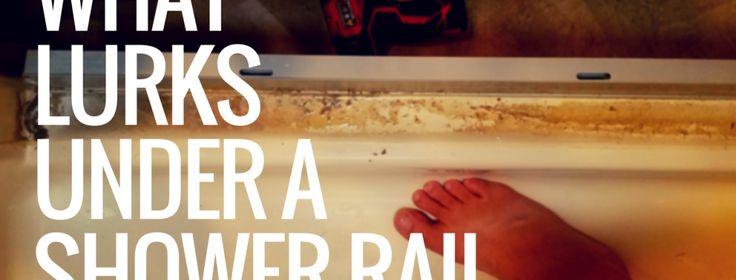 What Lurks Under e Shower Rail? – Hebard's Travels