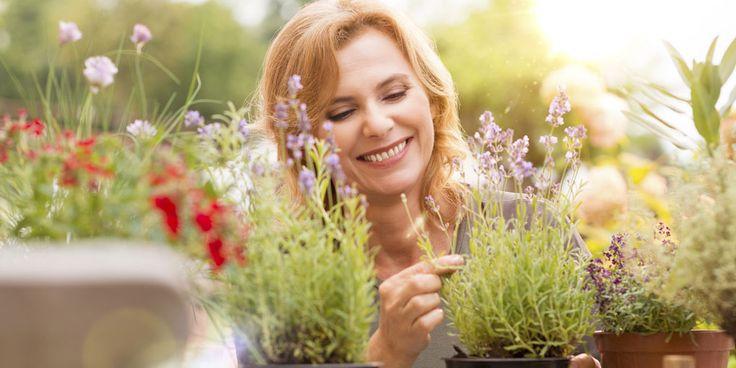 Heerlijk om in je tuin te zitten, maar het wordt vervelend als muggen jou als een lekker hapje zien. Behalve je in te smeren met een goed antimuggenmiddel, kun je ook een aantal planten in de tuin zetten die deze lastige beestjes verjagen. 1. Citronellagras Gebruik je citronellakaarsen op je terras om muggen te verjagen?…
