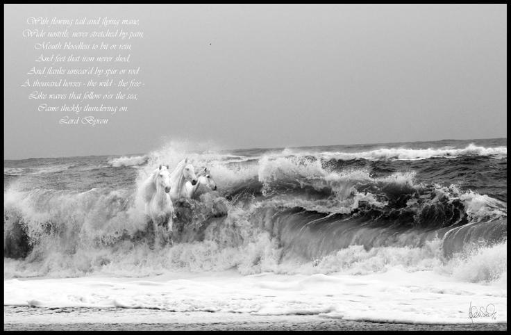 Cardedu Beach - Sardegna  November 2011
