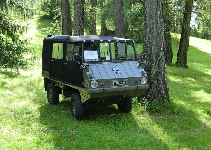 Haflinger 4x4 Jeep For Sale | Autos Post