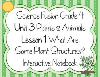 This s an interactive notebook for Science Fusion,grade 4, unit 3, lesson 1 - What Are Some Plant Structures? This includes activities for the following topics: Nonvascular & Vascular Plants Parts of the vascular plant - stem, root, leaves Photosynthesis