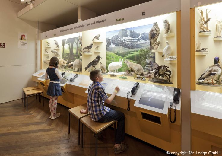 Museum Mensch und Natur - Mr. Lodge
