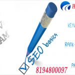 Search Engine Optimization Expert Company Chandigarh