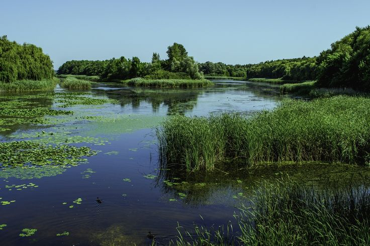 Kányavári sziget, Kisbalaton - Hungary