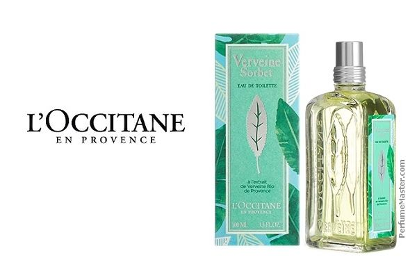 19 Best Incredibly Long Lasting Perfumes For Women 2020 With