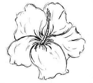 Hibiscus Flower Drawings Tattoo Design Page 2