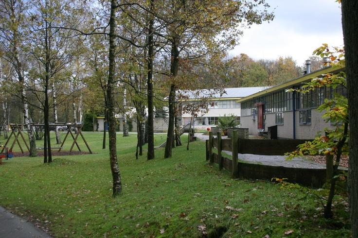 Onberkt vakantie voor ieder gezin in de bossen van Arnhem.