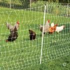 Electric fence - PoultryNet® and PoultryNet® Plus 12/42/3 Electric Netting