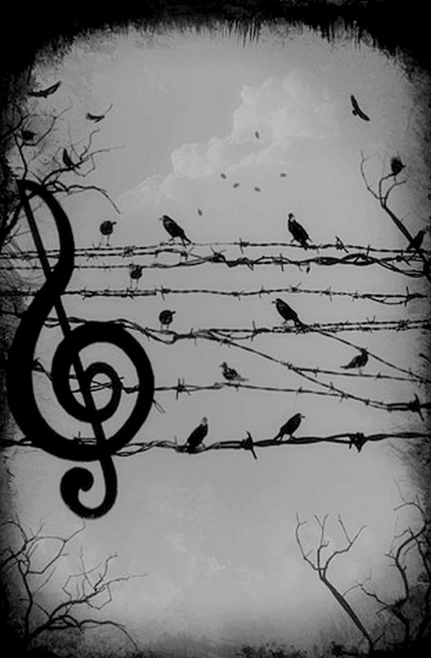 Life has its own melody by junest. °