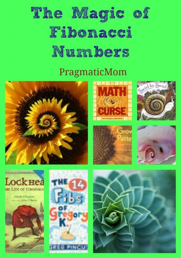 Books for Kids about Math of Spirals :: PragmaticMom Science in Everyday Life retired Junior Girl Scout badge