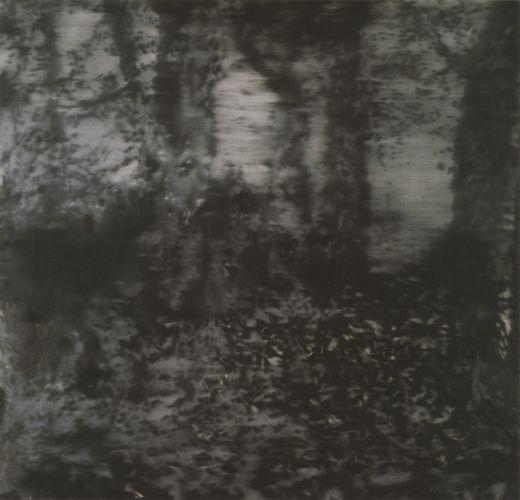 Gerhard Richter, Waldstück, 1965