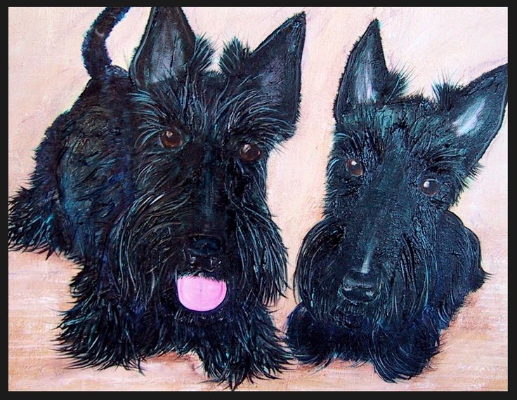 "FROM THE ARCHIVES I think this was my first ""Double Pet Portrait"" Lachie and Prudie Circa 2001 75cm x 100cm PRIVATE COMMISSION"