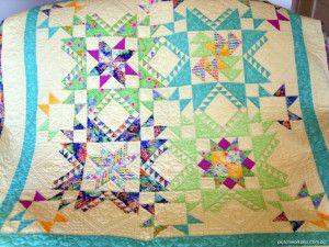 Feathered Star Sampler
