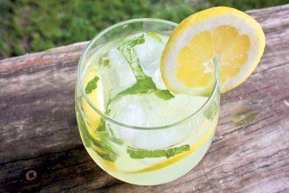 Vodka y limonada